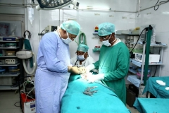 yerras-hospital-new-photos_page-0017